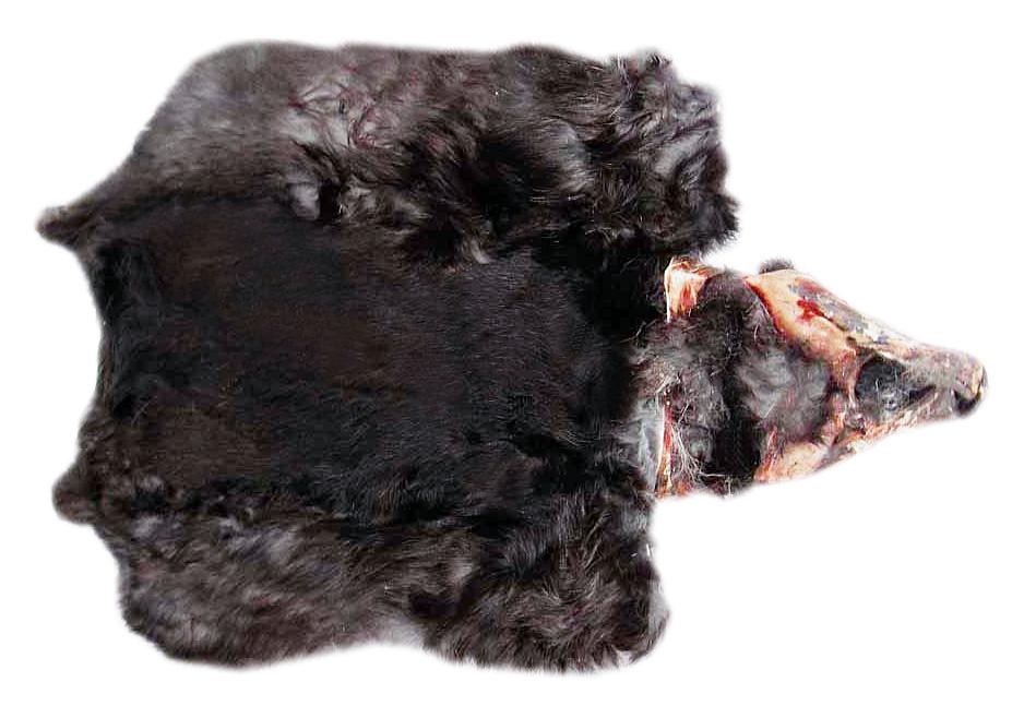 шкурка кролика черная